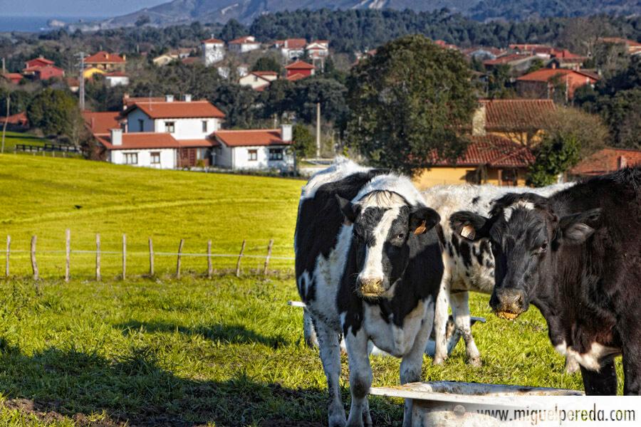 Fotografía Turismo rural Asturias